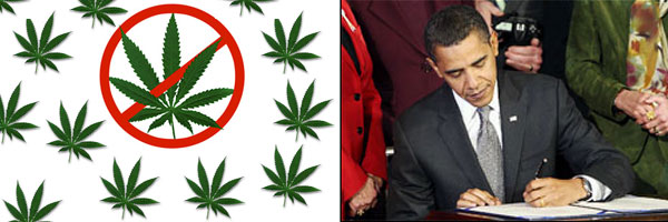 NTACT and president Obama make waterboarding marijuana user legal