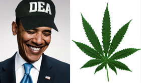 Obama auctioning off all marijuana seized since 2008