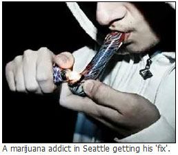 Marijuana addict in Seattle Washington smoking pot