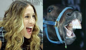 Sarah Jessica Parker a horse or human being