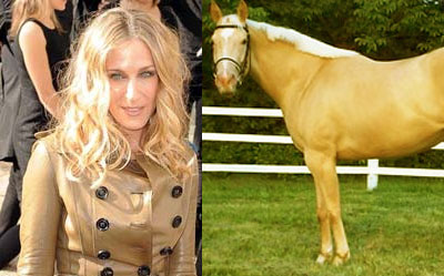 Sarah Jessica Parker is a horse