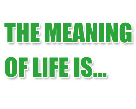 A guide to the meaning of life