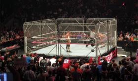 Ray Rice cage match Las Vegas