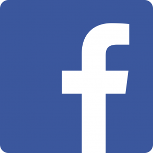 Facebook monthly fee of $1.99/mo to begin in June